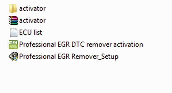 Professional EGR DTC remover 3.0 02.2016 full